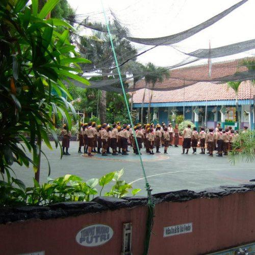 indo2